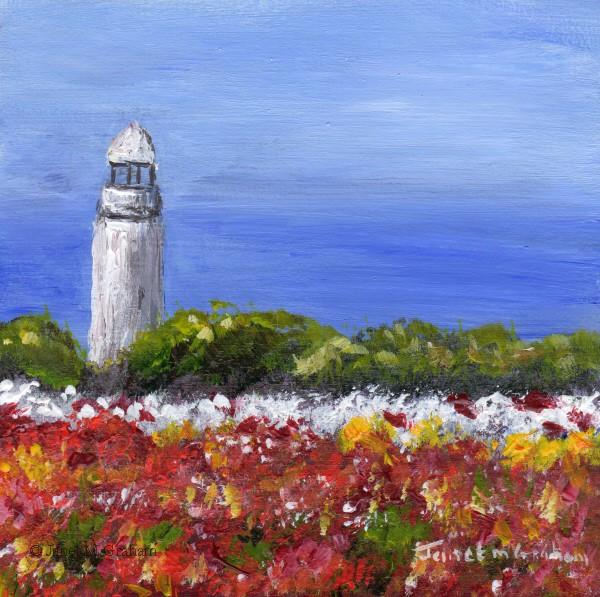 """Wynyard, Tasmania"" original fine art by Janet Graham"
