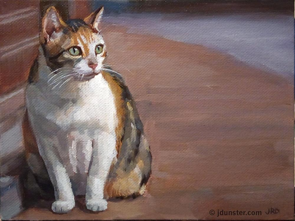 """Chubby Calico"" original fine art by J. Dunster"
