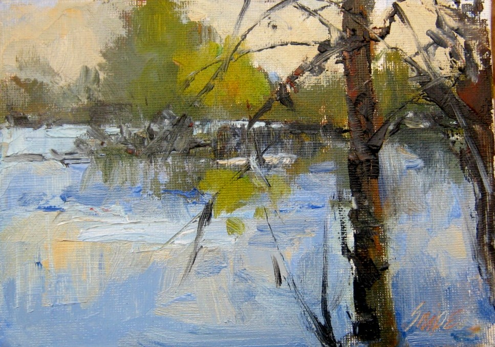 """Lake View, Pearson Lake, Union County, NC"" original fine art by Connie Snipes"