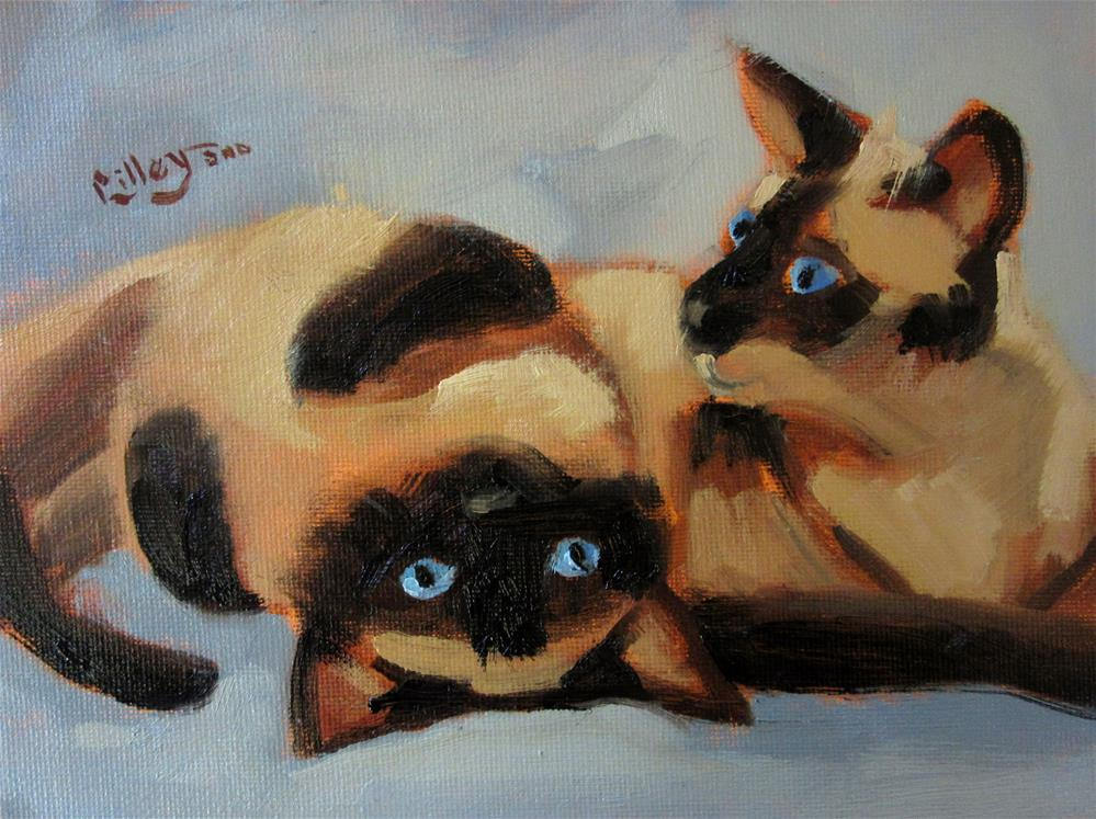 """""""Out of Catnip, Are We?"""" original fine art by Maresa Lilley"""