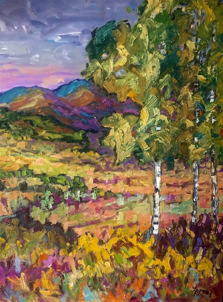 """Moraine Park, Rocky Mountain National Park"" original fine art by Liz Zornes"