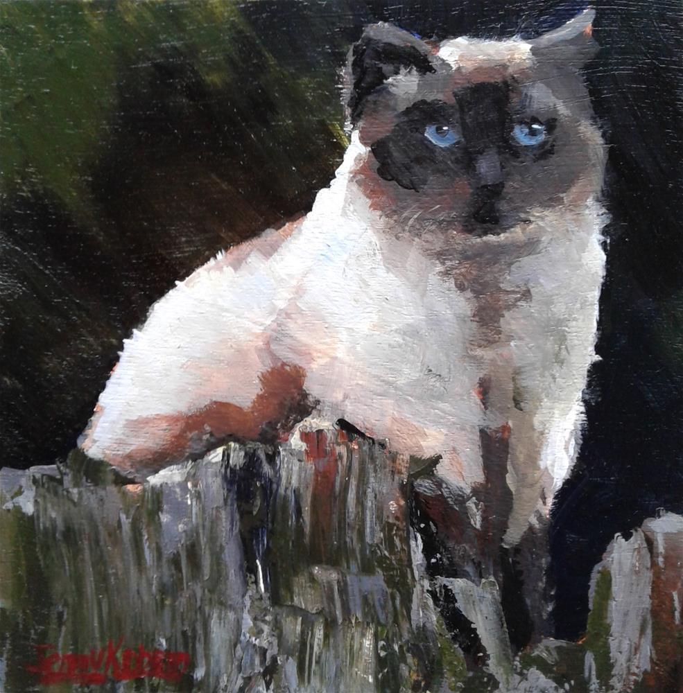 """Carolyn cat"" original fine art by Jenny Kinberg"