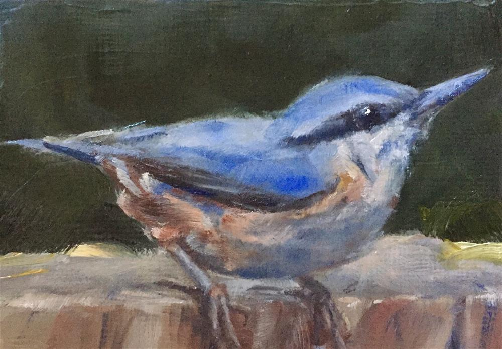 """Nuthatch"" original fine art by Gary Bruton"