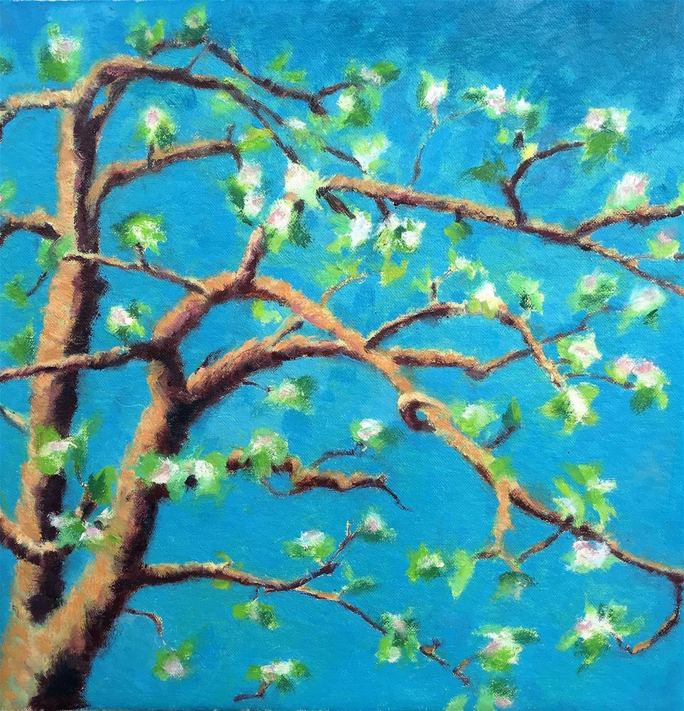 """""""Apple Blossom"""" original fine art by Tracy Wise"""
