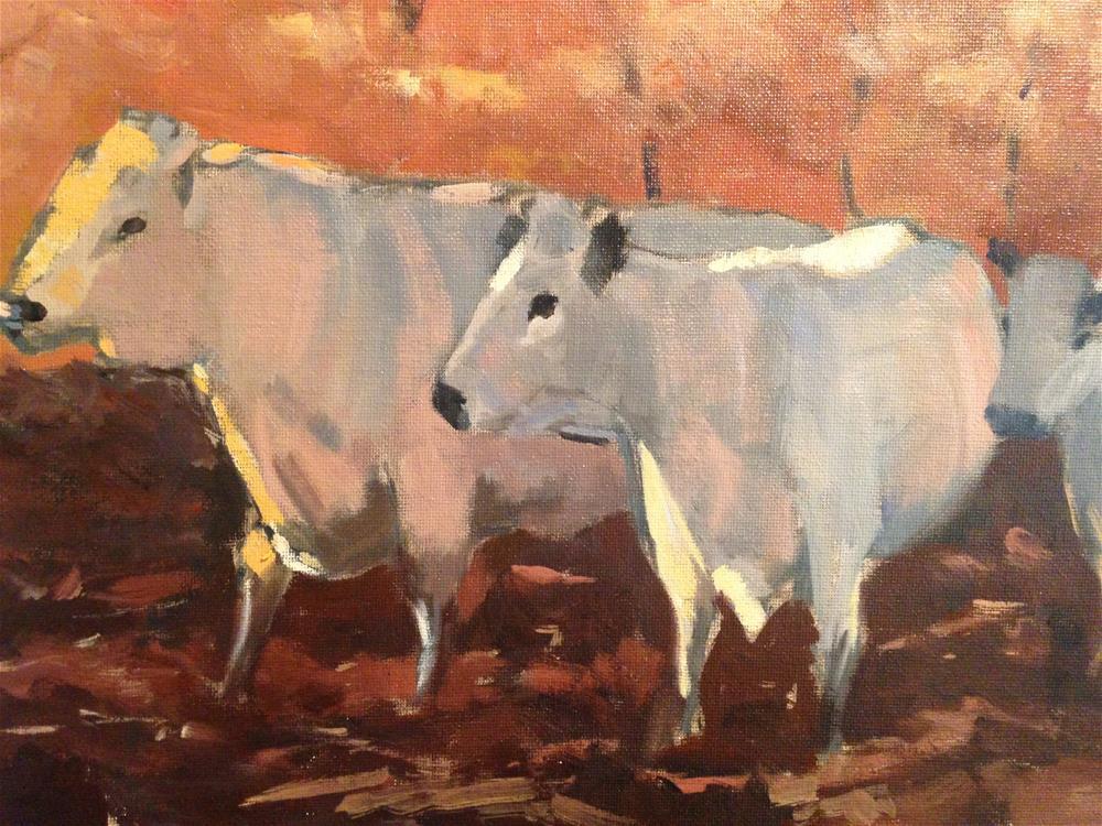 """Evening cows"" original fine art by Patty Voje"