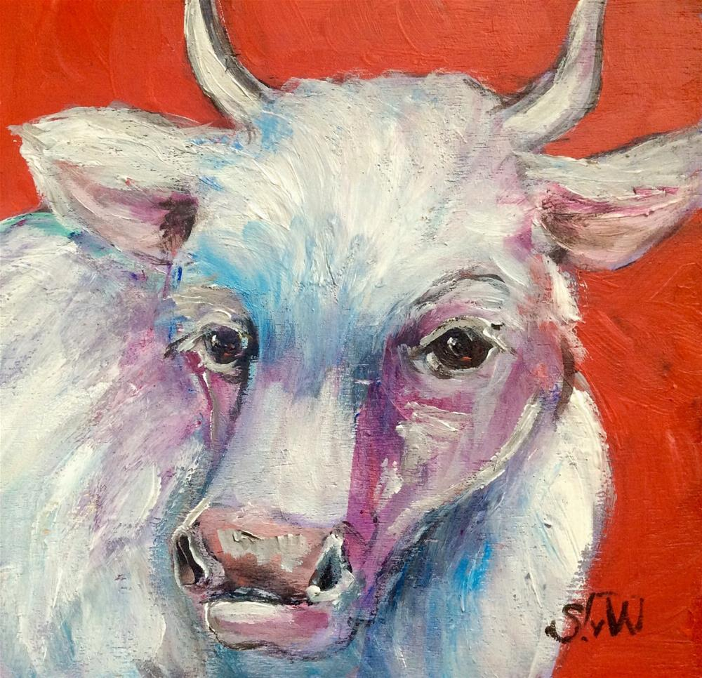 """White cow"" original fine art by Sonia von Walter"