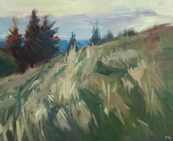 """""""The Clouds and Grass Play Together at Dusk"""" original fine art by Patti McNutt"""