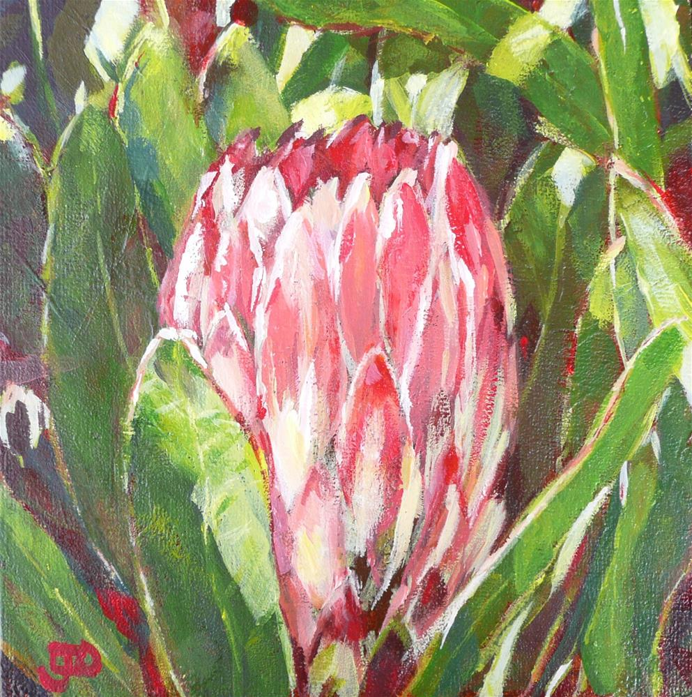 """Protea"" original fine art by Leanne Owen"