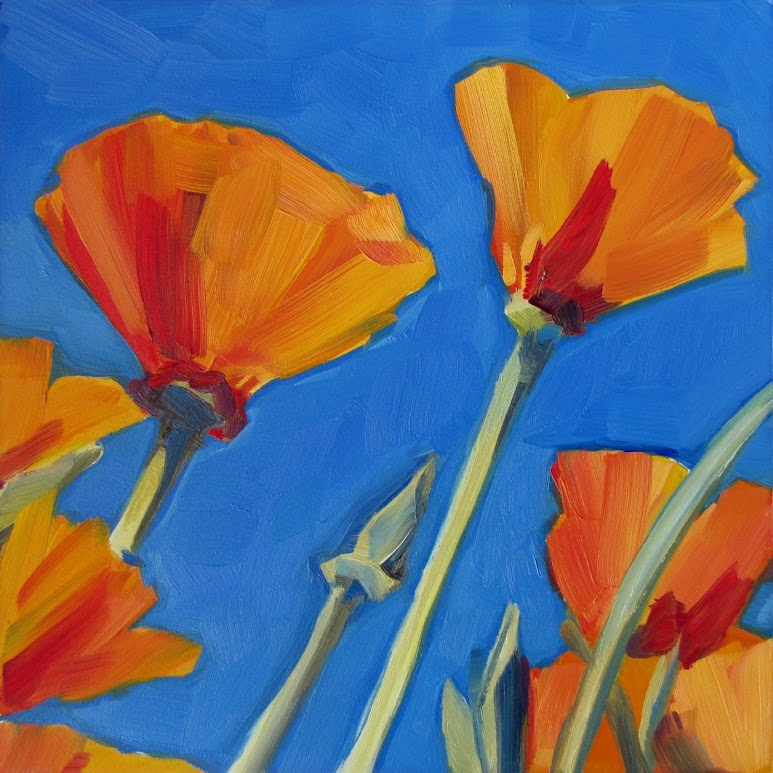 """California Poppies"" original fine art by Nora Bergman"