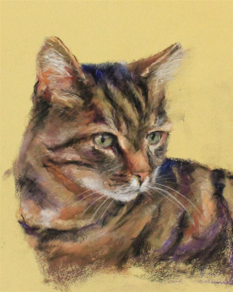 """Cat sketch in pastel"" original fine art by Marco Vazquez"