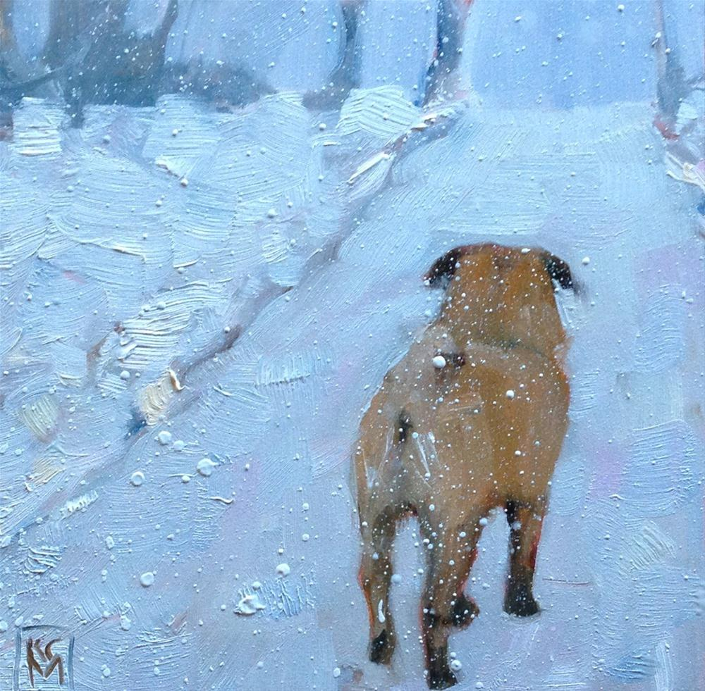 """Brrrrrr...Pug!  6x6 Inch Oil Painting by Kelley MacDonald"" original fine art by Kelley MacDonald"