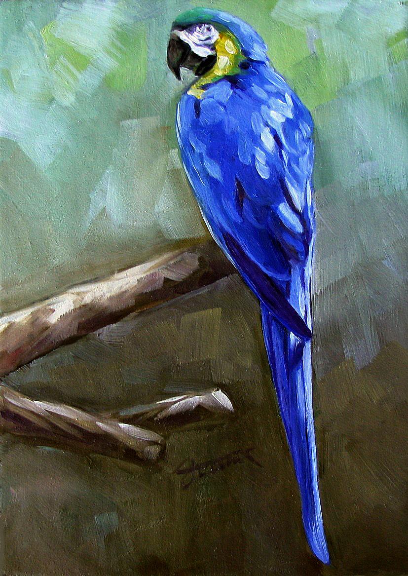 """Blue Parrot"" original fine art by Joanna Bingham"