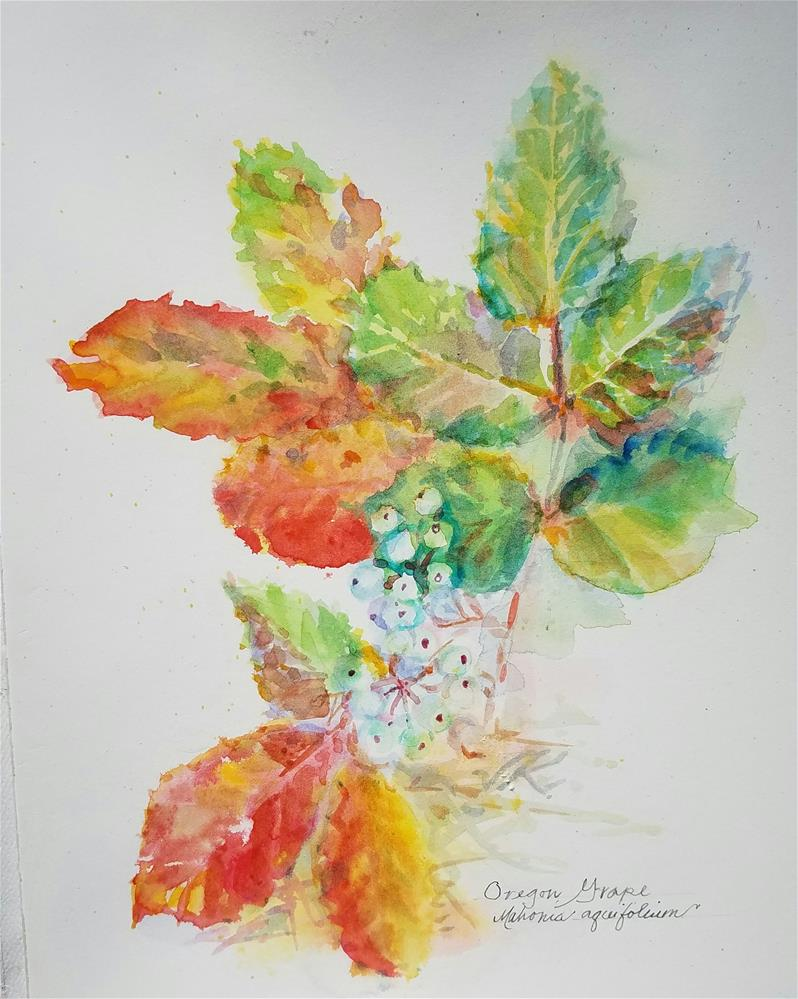"""Oregon Grape"" original fine art by Jean Krueger"