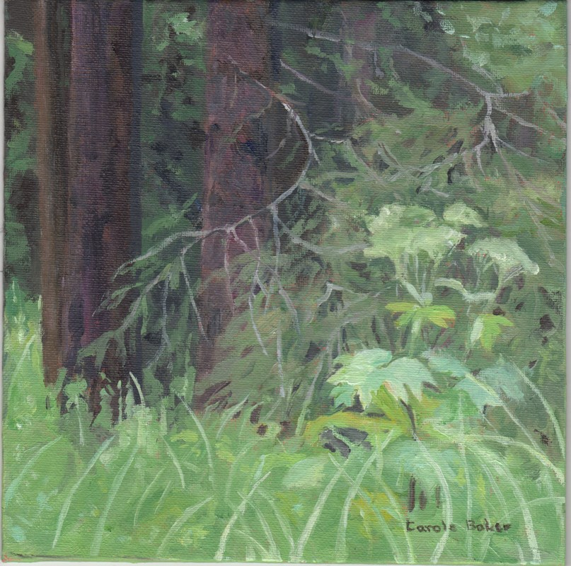 """Along the Lane"" original fine art by Carole Baker"