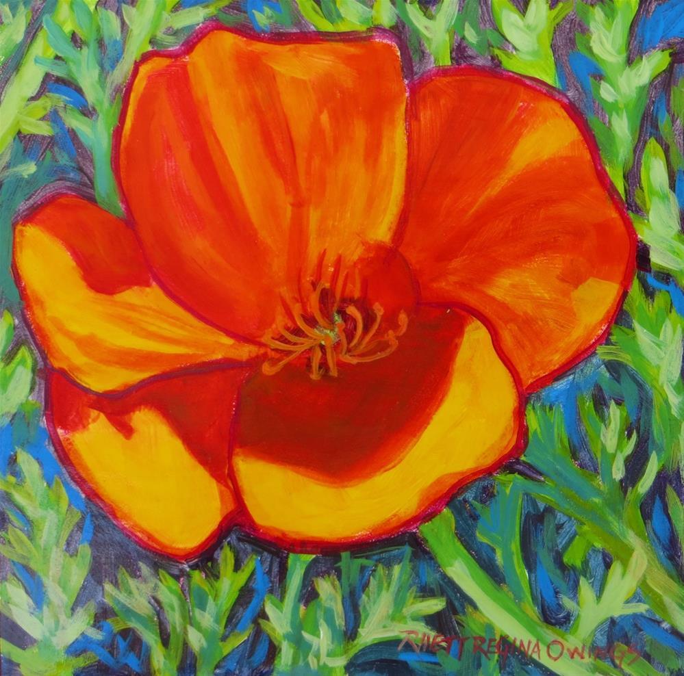 """California Poppy"" original fine art by Rhett Regina Owings"