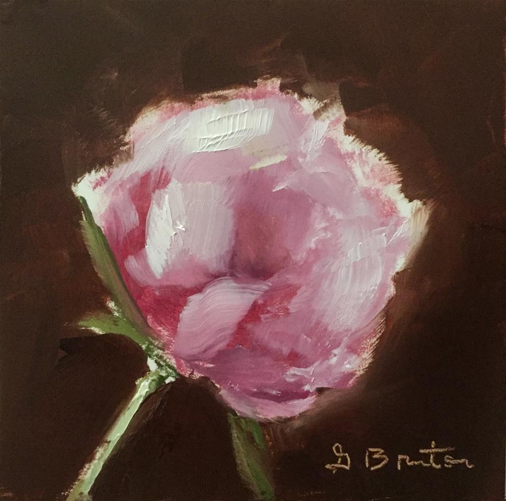 """Peony, Early Light"" original fine art by Gary Bruton"