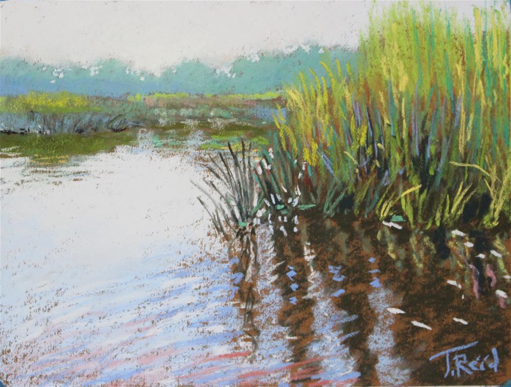 """""""Blue Reeds"""" original fine art by Toby Reid"""