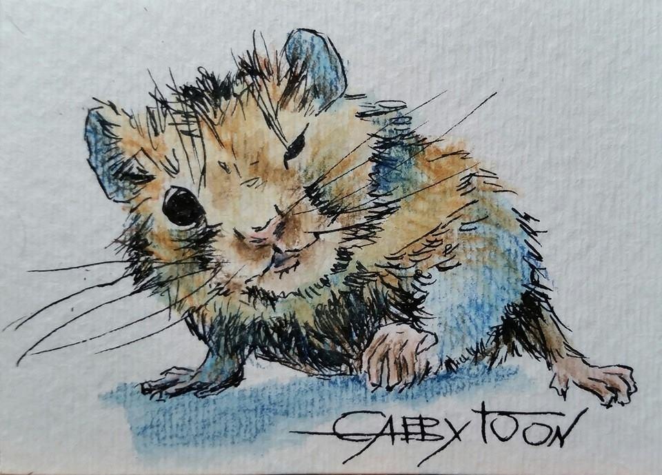 """A Sneaky Hamster(ACEO)"" original fine art by Gabriella DeLamater"