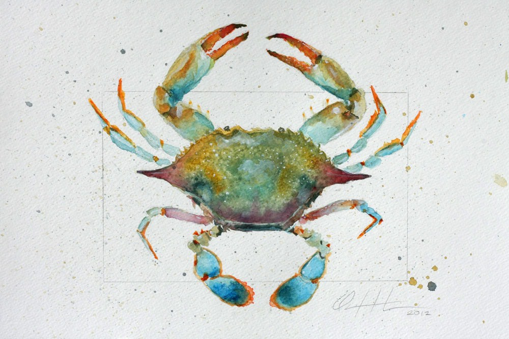 """Blue Crab 2"" original fine art by Clair Hartmann"