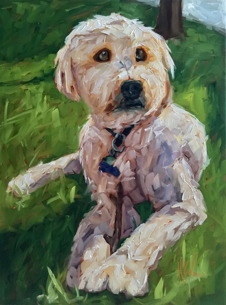 """""""Oliver"""" original fine art by Hallie Kohn"""