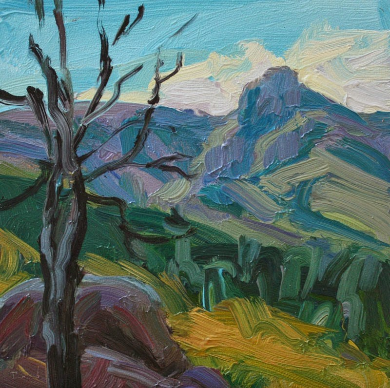 """Chiracahua Mountains"" original fine art by Kathryn Townsend"