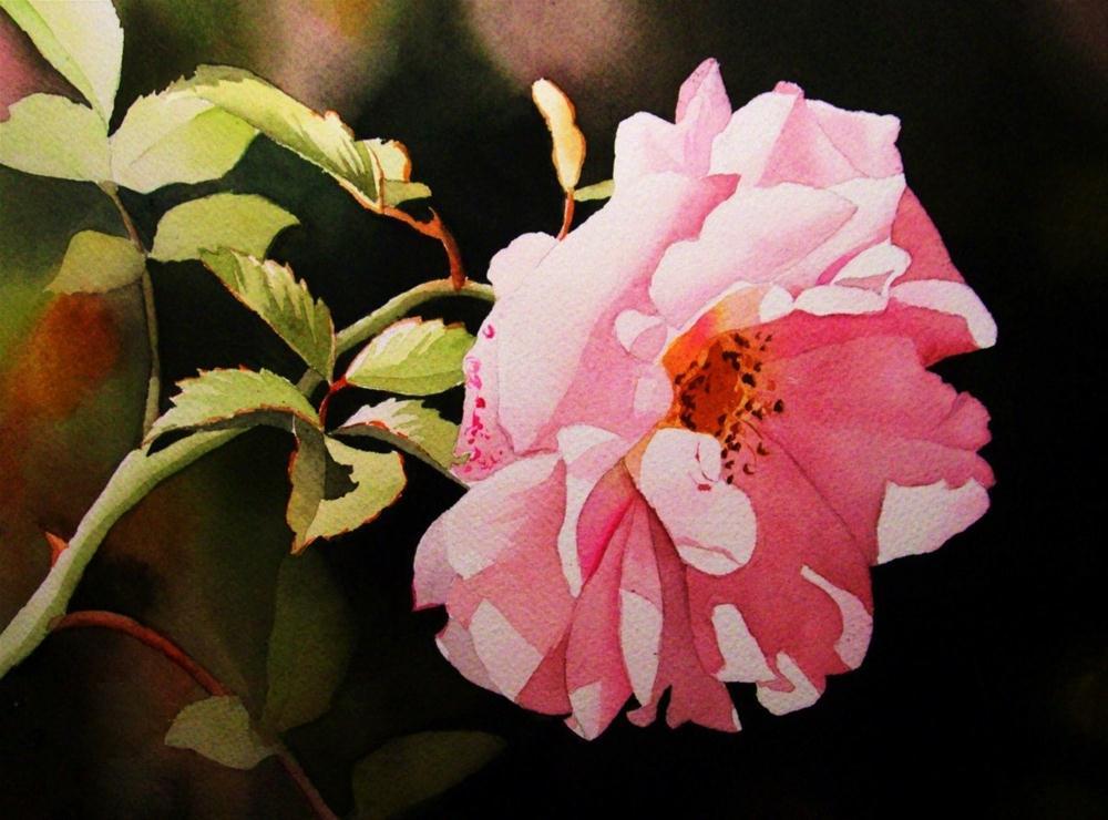 """Soft Morning Sun"" original fine art by Jacqueline Gnott, TWSA, WHS"