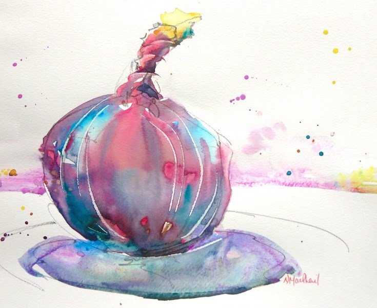 """study of an onion"" original fine art by Nora MacPhail"