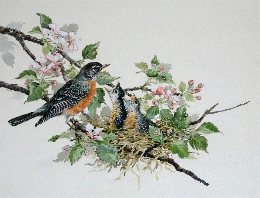 """American Robins"" original fine art by Jean Pierre DeBernay"