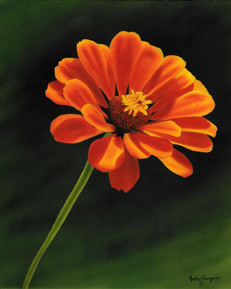 """Orange is the New Beautiful"" original fine art by Fred Schollmeyer"