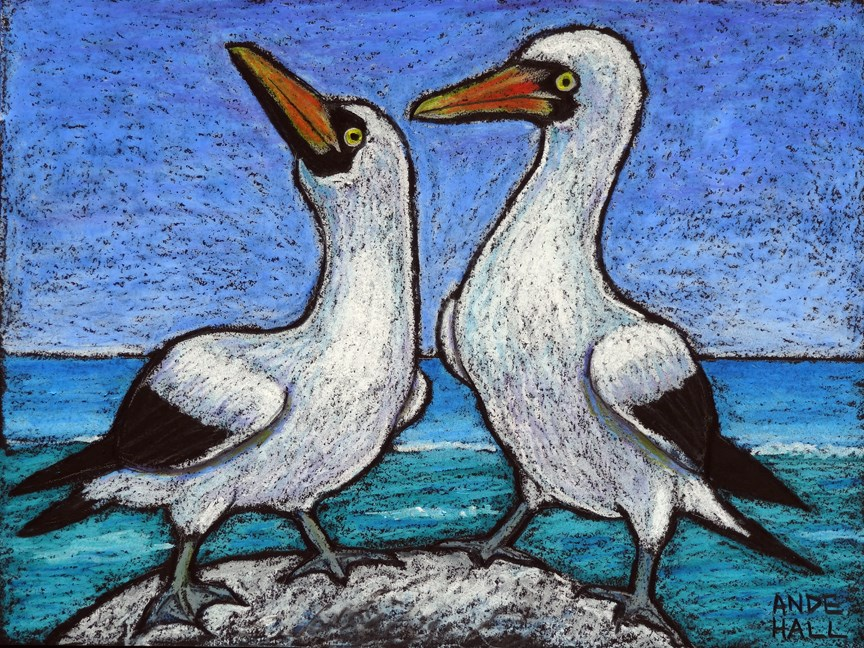"""Masked Boobies"" original fine art by Ande Hall"