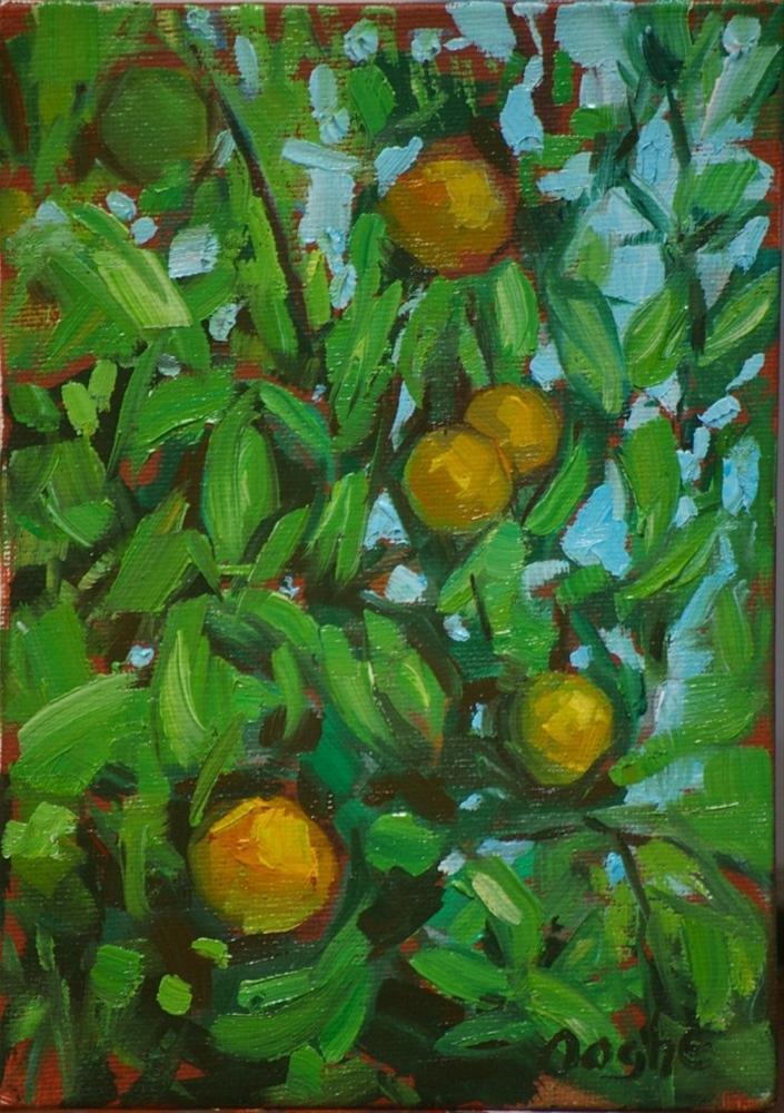 """Orange Tree"" original fine art by Angela Ooghe"