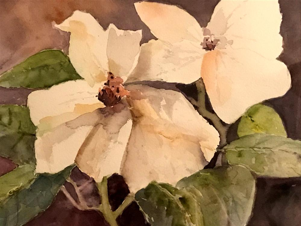 """magnolias"" original fine art by Betty Argiros"