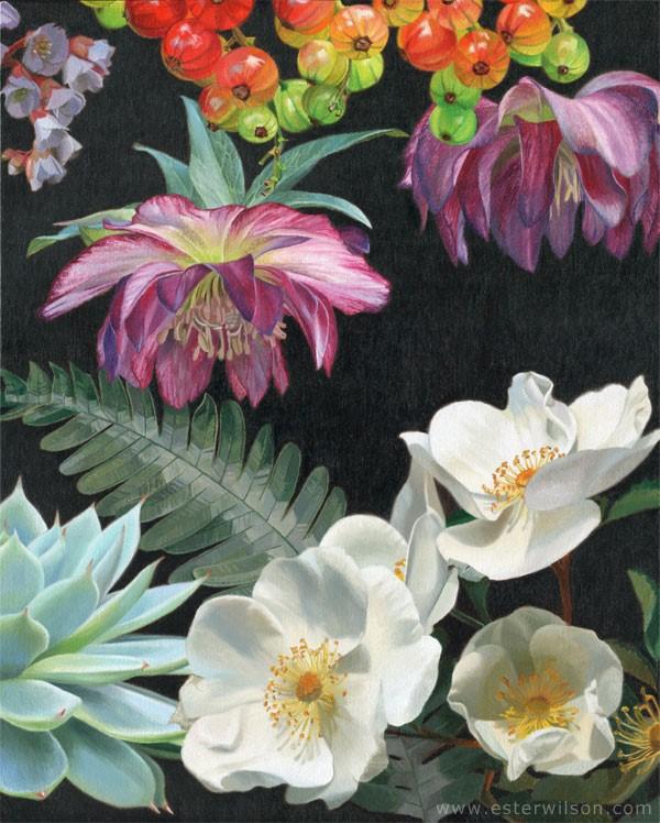 """Flora III"" original fine art by Ester Wilson"
