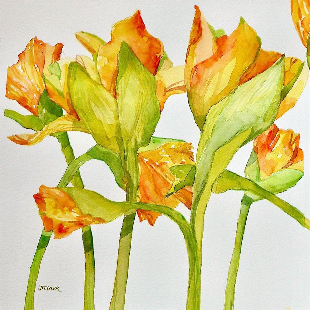 """""""Daffodil Waltz"""" original fine art by Judith Freeman Clark"""