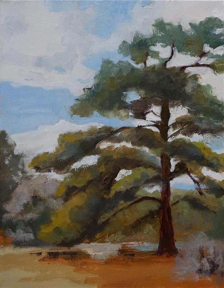 """""""Old Tree"""" original fine art by Catherine Van Berg"""