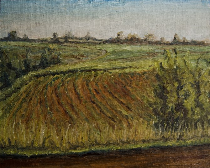 """Indiana Farmland"" original fine art by Rachel Steely"