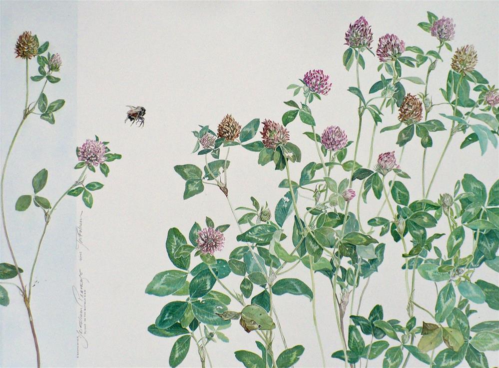"""Portfolio 2: Plight of the Bumblebee"" original fine art by Nicoletta Baumeister"