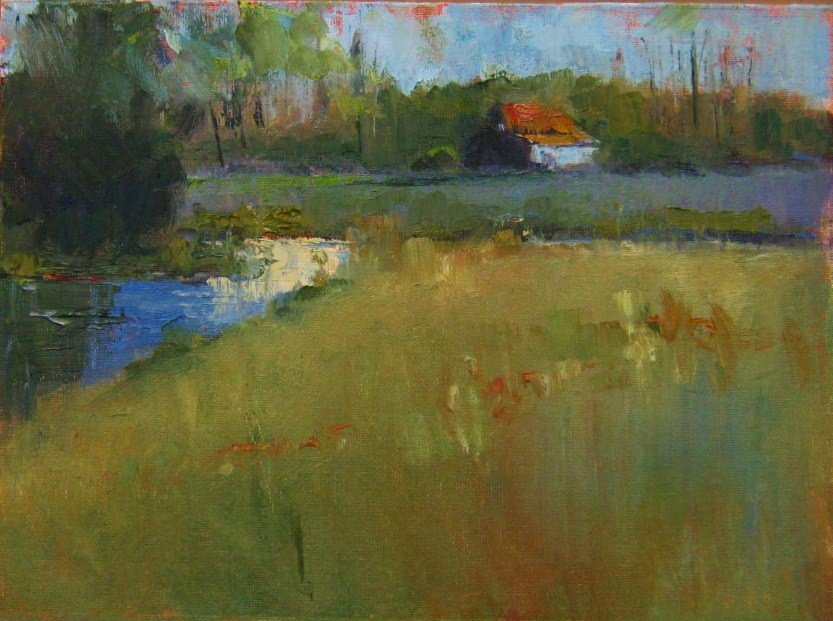 """""""Field and Stream"""" original fine art by Connie Snipes"""