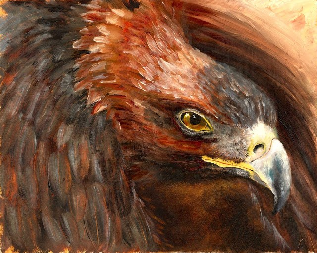 """Golden Eagle"" original fine art by Karen Robinson"