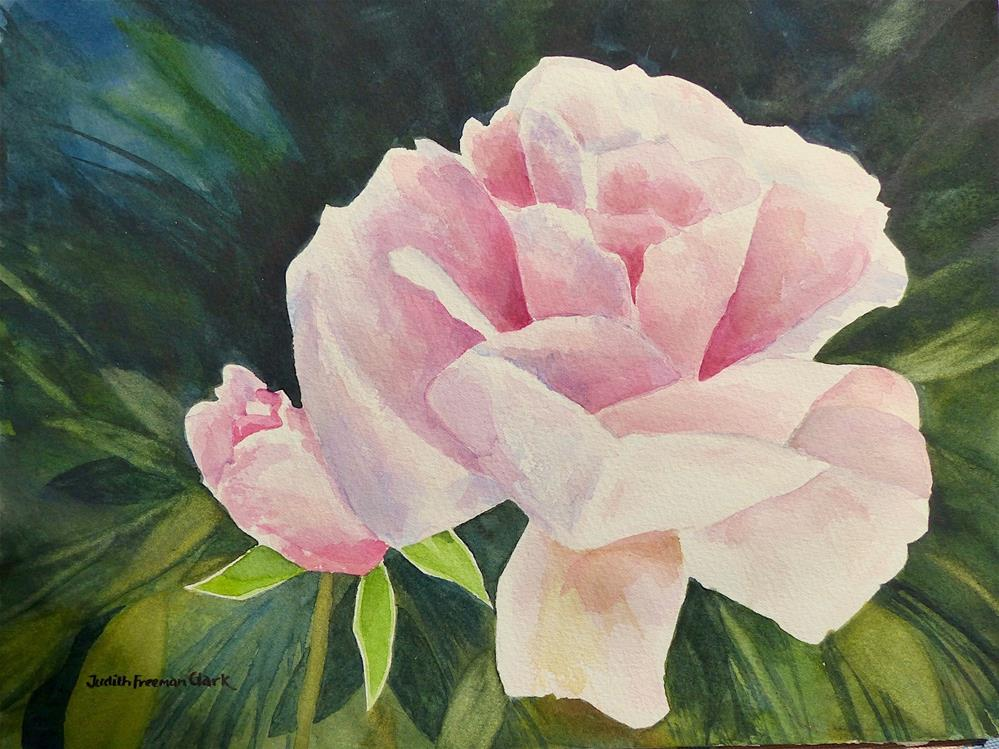 """Oslo Rose"" original fine art by Judith Freeman Clark"
