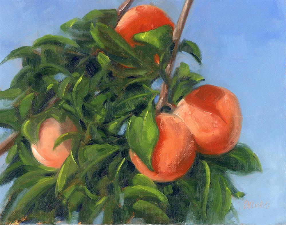 """Just Peachy Study I"" original fine art by Susanne Billings"