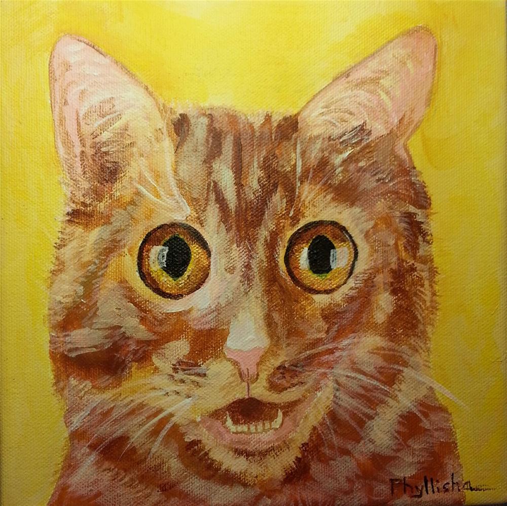 """Surpised Kitty"" original fine art by Phyllisha Hamrick"