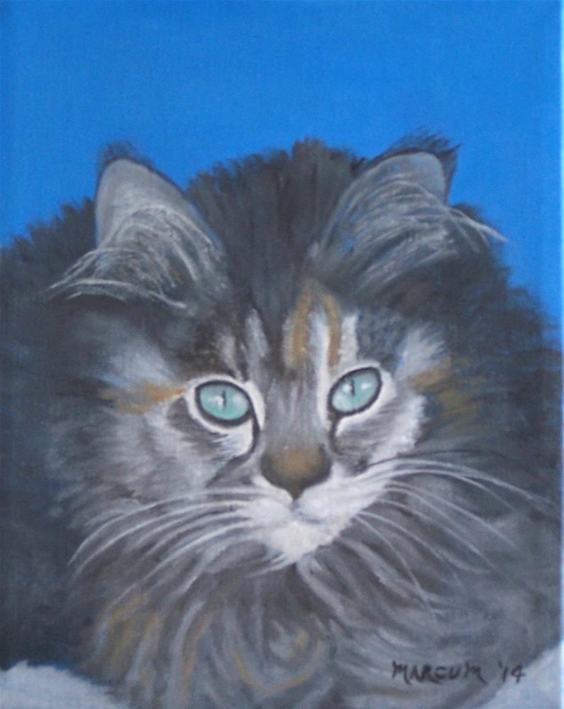 """Gray Kitten"" original fine art by John Marcum"