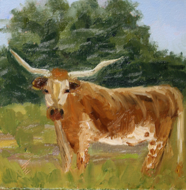 """Longhorn Fielder"" original fine art by Jane Frederick"