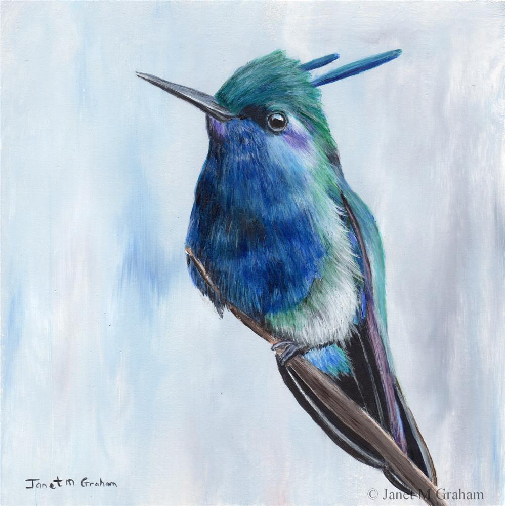 """""""Plovercrest"""" original fine art by Janet Graham"""
