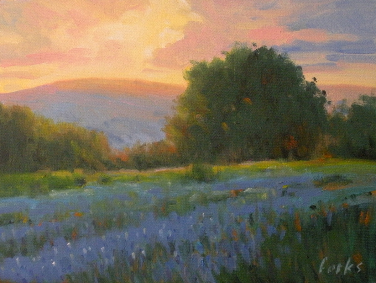 """""""Hill Country Sunset"""" original fine art by David Forks"""