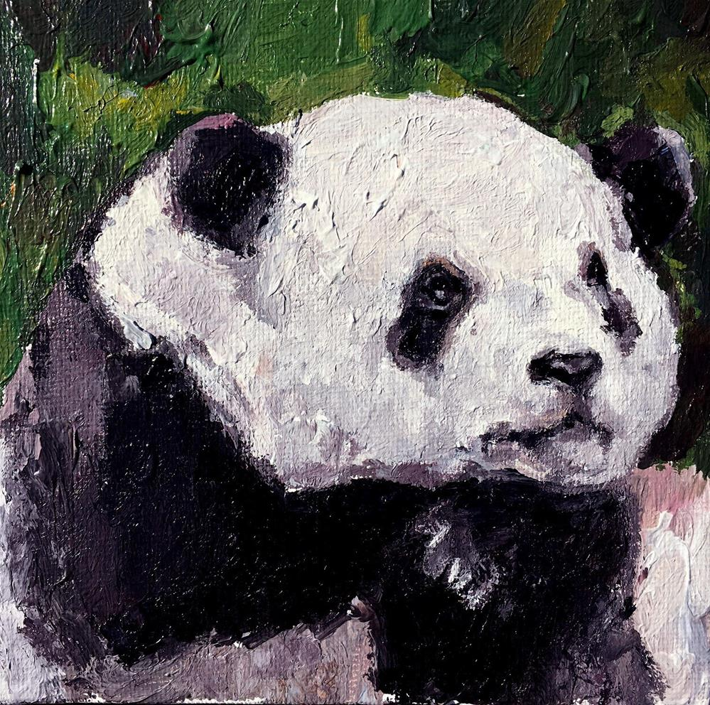 """Panda"" original fine art by Nava Judith"