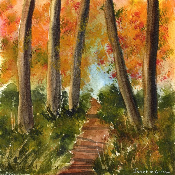 """Autumn Woods"" original fine art by Janet Graham"