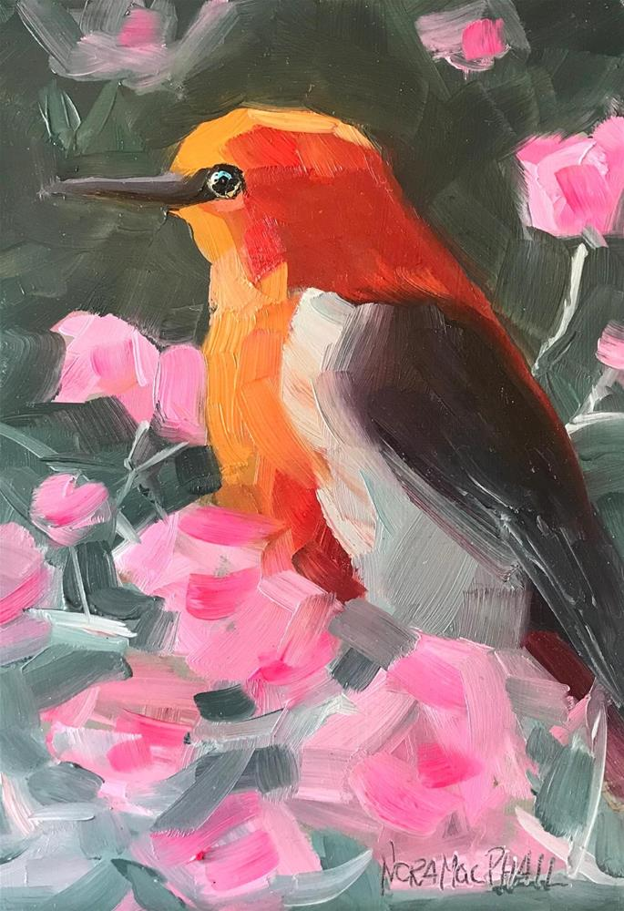 """Scarlet Honey-Eater"" original fine art by Nora MacPhail"