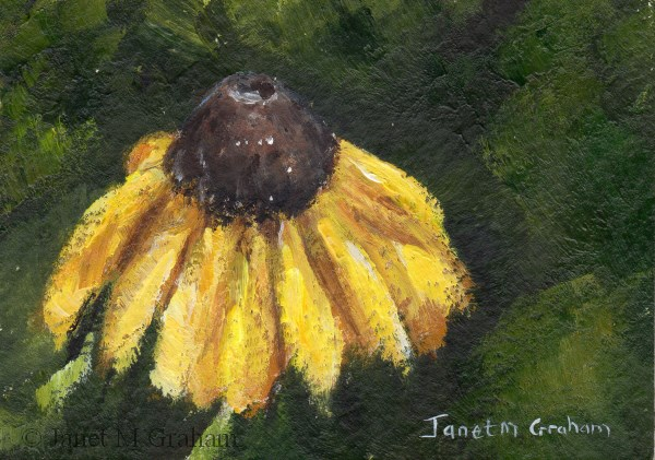 """""""Yellow Daisy ACEO"""" original fine art by Janet Graham"""